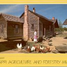 AGRICULTURE AND FORESTRY MUSEUM - JACKSON MISSISSIPPI COLOR PICTURE POSTCARD #492 UNUSED