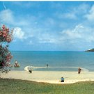 DANIEL'S HEAD FISHERMEN BERMUDA GIANT COLOR PICTURE POSTCARD #515 USED 1957