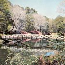 RUSTIC BRIDGE CROSSING MIRROR LAKE BELLINGRATH GARDENS MOBILE GIANT COLOR PICTURE POSTCARD #518 USED