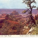 VIEW FROM CAPE ROYAL - GRAND CANYON NATIONAL PARK ARIZONA COLOR POSTCARD #532 UNUSED 1978