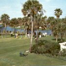 PONTE VEDRA BEACH FLORIDA THE INN AND GOLF CLUB COLOR PICTURE POSTCARD #530 USED 1957