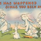 LOTS HAS HAPPENED SINCE YOU BEEN AWAY - RABBITS LINEN PICTURE POSTCARD #564 USED 1957