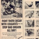 1958 COLGATE DENTAL CREAM MAGAZINE AD (264)
