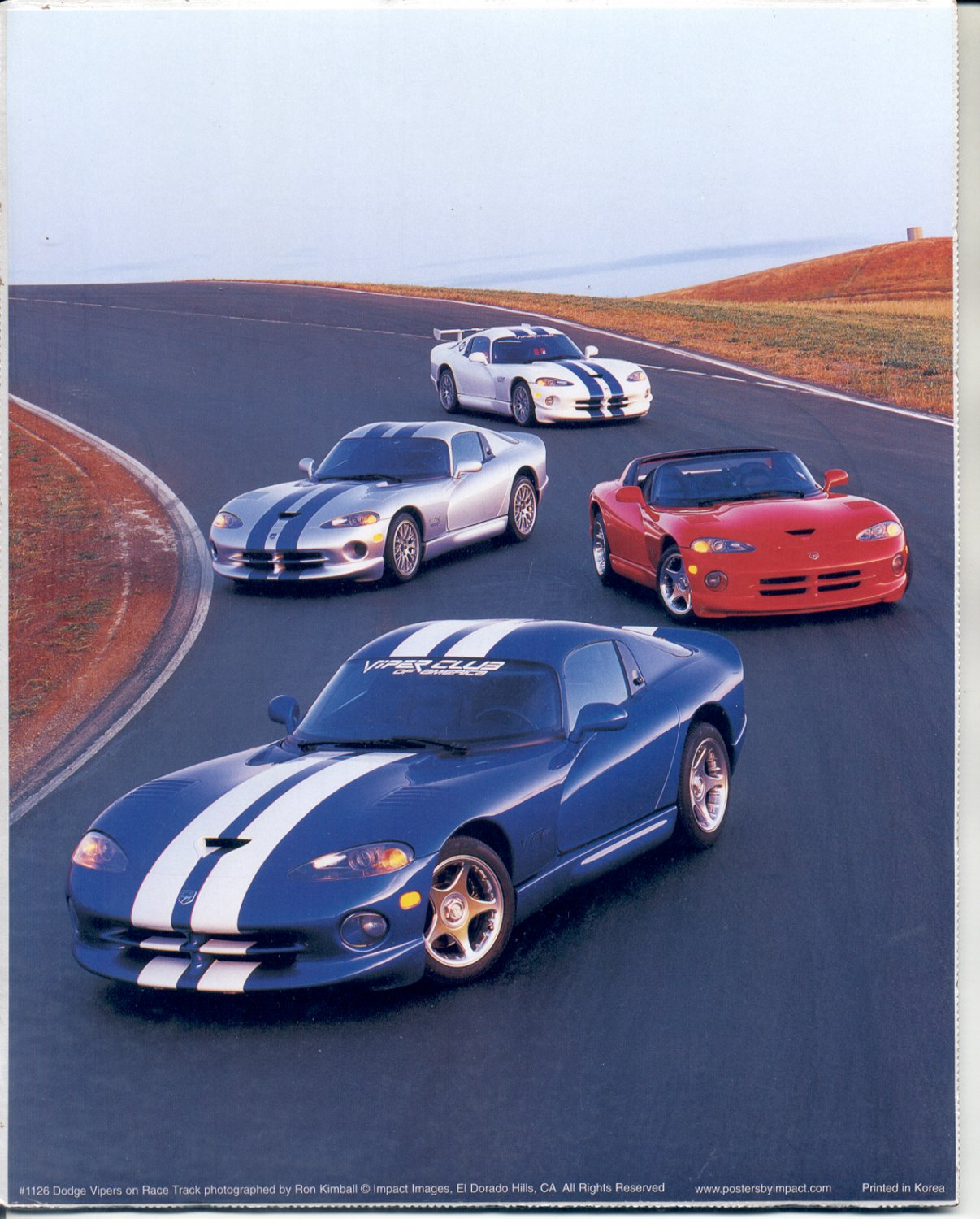 PRINT #68:  DODGE VIPERS ON RACE TRACK PHOTO by RON KIMBALL  8 X 10 MINT