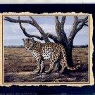 1997 PRINT #56:  LEOPARD 8 X 10  MINT
