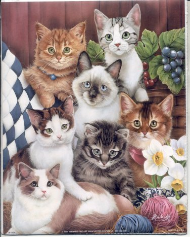 1999 PRINT #55:  A BUNCH OF KITTENS - CATS ON A COUCH 8 X 10 MINT