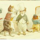 JUST YOUR STYLE SIR - CAT COLOR POSTCARD # 20 UNUSED 1994 NEAR MINT
