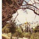 VINTAGE GARDEN OF GETHSEMANE JERUSALEM COLOR POSTCARD UNUSED 1992 NEAR MINT # 04