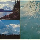 MOUNT ST. HELENS WASHINGTON - VINTAGE ORIGINAL COLOR POSTCARD UNUSED 1985 NEAR MINT # 635