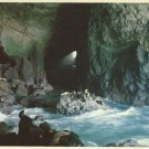 SEA LION CAVES OREGON COAST ORIGINAL COLOR POSTCARD UNUSED MINT #639