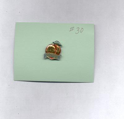 Georgia  hat (lapel) pin (#30)
