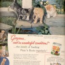1957  Puss 'n Boots cat food ad (# 4676)