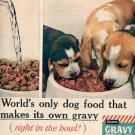 1961 Gaines Gravy Train Dog Food ad ( # 2234)