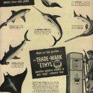 1948  Ethyl     ad (# 598)