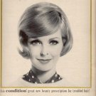 1964  Condition by Clairol   ad (# 4507)