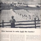 Sept. 16, 1946      National Dairy Products Corporation   ad  (#1006)