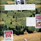1964 Contadina Tomato Paste    ad (#5936)
