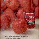 1964  Hunt's Tomato Catsup  ad (#5654)