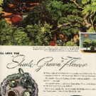 1946 Chase & Sanborn Coffee ad  (#612)