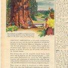 1946 Greyhound  ad (# 1943)