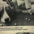 1966  Hush Puppies shoes ad (  # 643)
