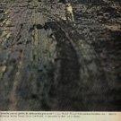 1963  Texaco    ad (  # 1326)