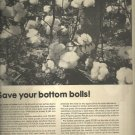 1967  Defoliate with Folex   ad (#4022)