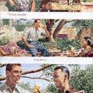 1948  Schlitz Beer ad (  # 1600)