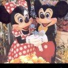 Walt Disney World- Main Street Flower Market-  Postcard (# 91)-