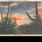 Sunset on the Desert, California-  Postcard- (# 4)