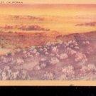 Death Valley,  California -  Postcard- (# 54)
