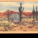 Cactus on the Desert at Red Rock, CA-  Postcard- (# 69)