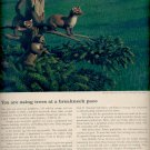 Feb.  11, 1964      Weyerhaeuser   ad (# 3968)