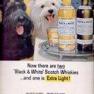 Oct. 16, 1964   Black & White Scotch Whisky    ad (# 3333)