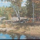Moose Lake Trading Post - Ont. Canada  Postcard  (#149)
