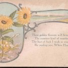 These golden flowers will bring to you     Postcard  (#179)