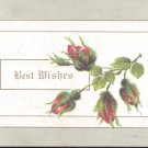 Best Wishes     Postcard  (#183)