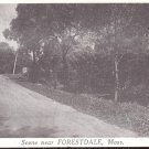 Scene near Forestdale, Mass.   postcard  # 8 (#213)