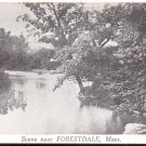 Scene near Forestdale, Mass.   postcard  #6 (#215)