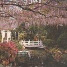 White Shadows Gardens of Douglas Chandor Weatherford, Texas    Postcard  (# 302)