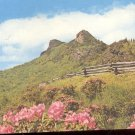 Grandfather Mountain Blue Ridge Parkway milepost 304    Postcard  (# 303)