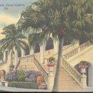 Tropical Park Race Track, Coral Gables Florida   Postcard  (#332)