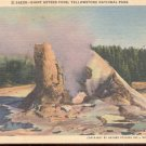 Giant Geyser Cone, Yellowstone National Park    Postcard  (#334)