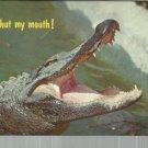 Well, Shut my mouth !     Postcard  ( # 384)