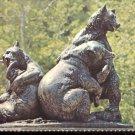 Brookgreen Gardens Murrells Inlet, South Carolina- Brown Bears     Postcard#2 (# 390)
