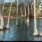 the Gazebo as seen through the Cypress Trees     Postcard   (# 402)