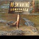 Gator Lagoon at Homosassa Springs, Florida   Postcard   (# 413)