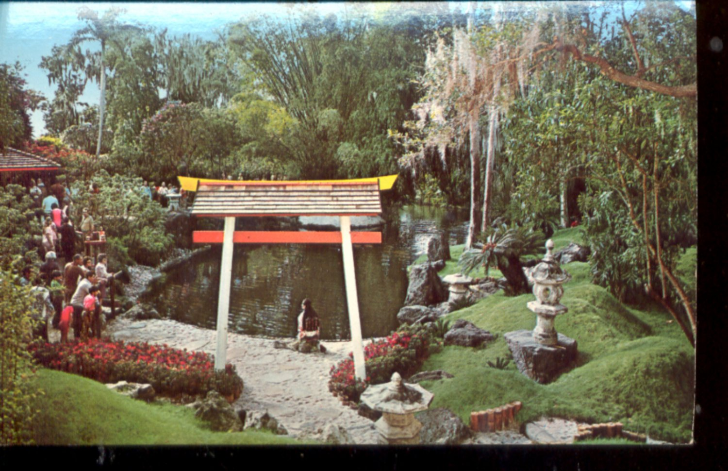 Plants Trees And Flowers From The Orient At Cypress Gardens Postcard 417