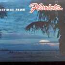 Greetings from Florida     Postcard (#434)