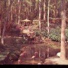 Bellingrath Gardens, Theodore,  Alabama      Postcard (#458)